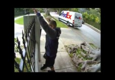 FedEx Driver Computer Monitor Over Fence