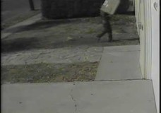 UPS Driver Throws Package Over Wall Without Ringing Bell