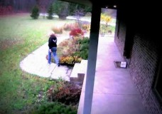 Postal Worker Delivery Person Gone Bad