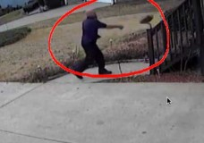 FedEx Throws This Man's Package – Then Pees In Bush