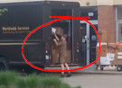 UPS Worker Lazily Throwing Packages into UPS Truck in Broad Daylight