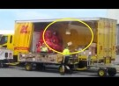 DHL Shamed for Deliberately Throwing Packages Into Loading Truck in Adelaide, Australia